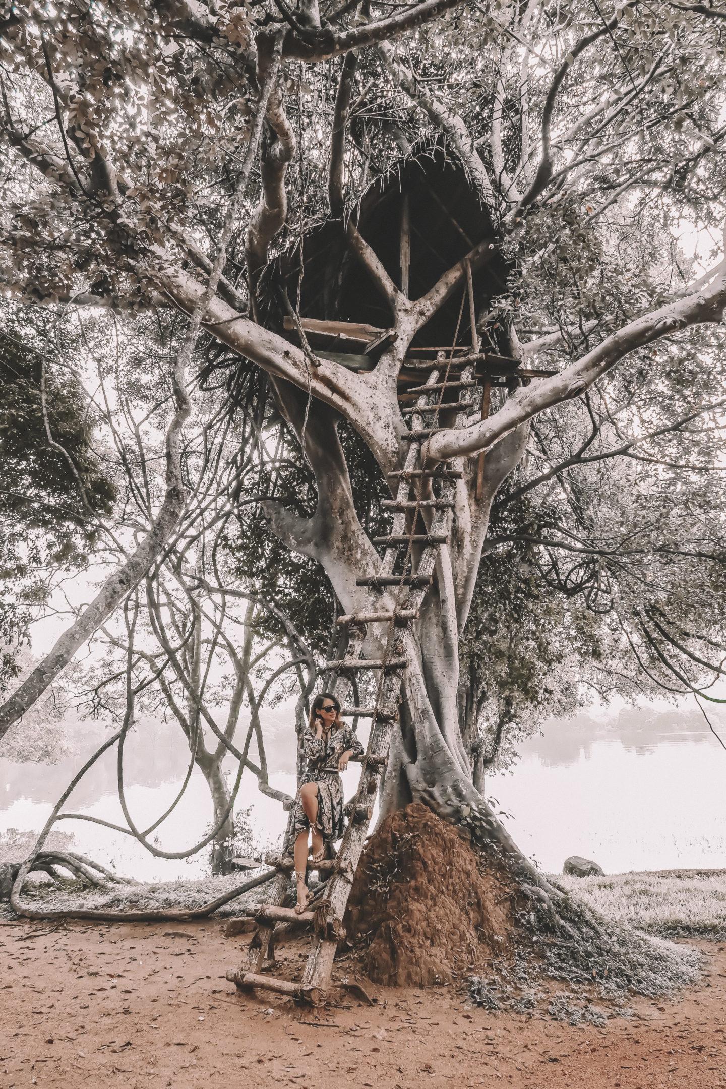 AMAYA LAKE: CULTURAL TRIANGLE sri lanka
